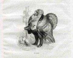 The Banker - Original Lithograph by J.J Grandville - 1852