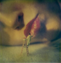 With a little Help - Contemporary, Polaroid, 21st Century, Color, Conceptual