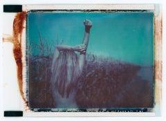 LET ME TAKE YOU DOWN, CAUSE I'M GOING TO - Contemporary, Polaroid, 21 Century