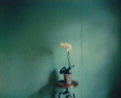 Still Life in Yellow - Contemporary, Polaroid, Photography, Color, 21st Century