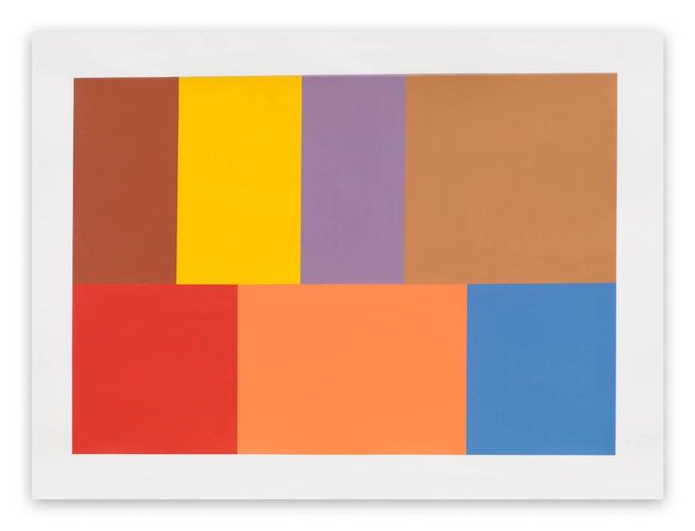 Tom McGlynn Abstract Drawing - Test Pattern 7 (Siena)
