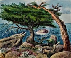 California Coast with Cypress Tree