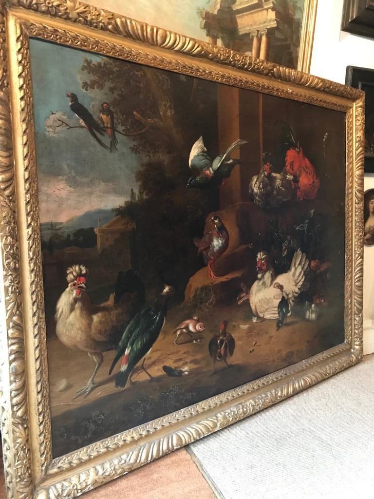 Beautiful 17th Century Dutch Oil Painting - An Assembly of Birds For Sale 2