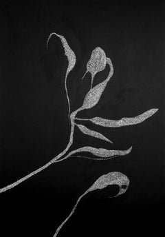 Secret Garden 3 - 21st Century, Flowers, Drawing, Black, White, Contemporary