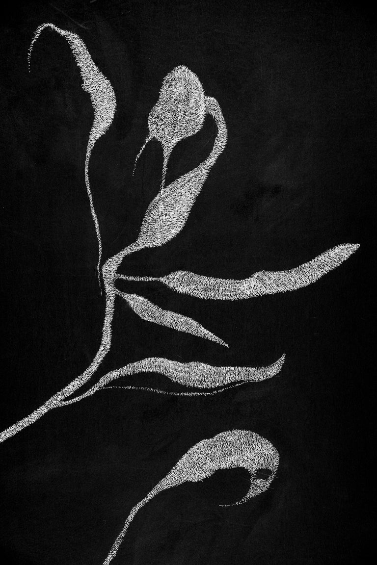 Secret Garden 3 - 21st Century, Flowers, Drawing, Black, White, Contemporary For Sale 1