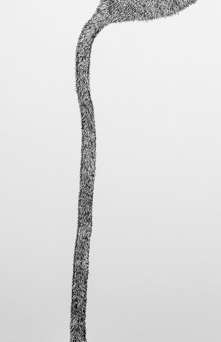 Secret Garden 1 - Contemporary, Flower, White, Black, Drawing, 21st Century For Sale 1