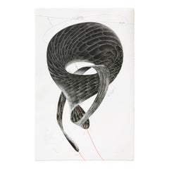 Inherited Desire, Lithograph on wove paper, Contemporary Artist, 21st Century