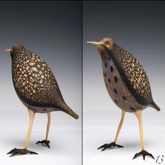 Bird #13
