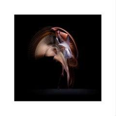 Abstract Dancers, White 3, 2019 (Photographic Print, Ballet, Dance, Orange)