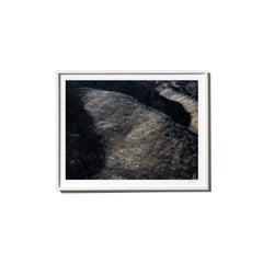 Hillside, 2017, from the Survivors series (Framed Color Landscape Photography)