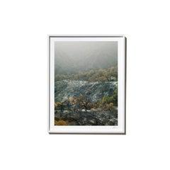 Vista, 2017, from the Survivors series (Framed Color Landscape Photography)