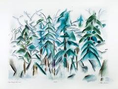 Trees Heavy with Snow
