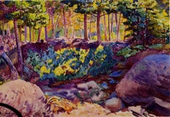 American Modernist watercolor, Maine, Woodland Pool, by Carl Cutler, c. 1920