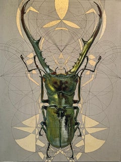 Hor-Aha - contemporary mixed media insect stag beetle gilding acrylic painting