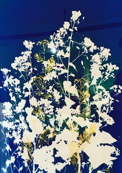 So Beautiful, So Abandoned II - cyanotype blue floral nature photography