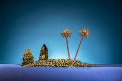 Ha Long Kerala - colourful photograph palm trees