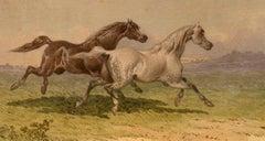 A Fast Gallop