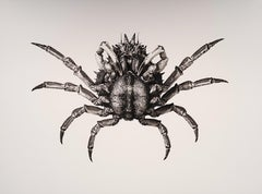 Carcinus Maenas, Platinum Iridium Print, Photography, Contemporary