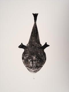 Melanocetus, Platinum Iridium Print, Photography, Contemporary