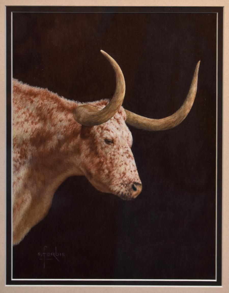 """""""Early Light""""  Longhorn Should Mount Drawing"""