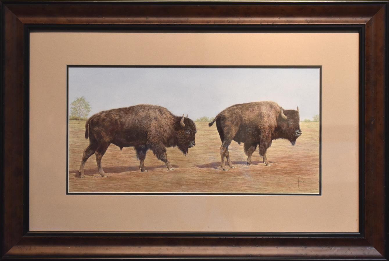 """""""Buffalo Stroll"""" Two Bison Walking Awesome Drawing"""