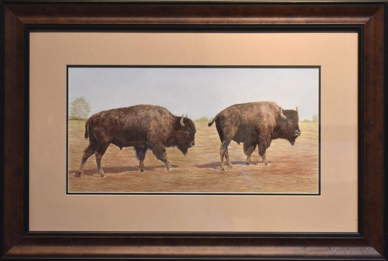"Steve Forbis Landscape Art - ""Buffalo Stroll"" Two Bison Walking Awesome Drawing"