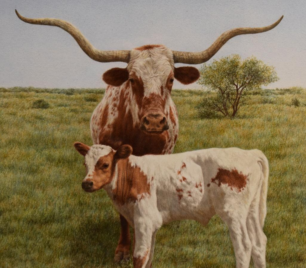 """""""New Generation"""" Longhorn With Calf"""