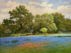 """""""A TOUCH OF INDIAN PAINT""""  TEXAS BLUEBONNETS & INDIAN PAINTBRUSH HILL COUNTRY"""