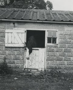 Rosemary Ellis Windows XIII Gelatin Silver Photograph Print horse stable