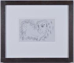 Clifford Ellis William Pug Dog II pencil sketch Mid Century Modern British Art
