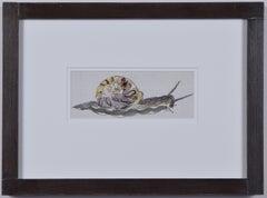 Rosemary Ellis Snail watercolour Modern British Art Wildlife Mid Century Modern