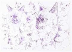 Birthday Cat original pen and ink sketch Derrick Sayer Beverley Nichols Cats ABC