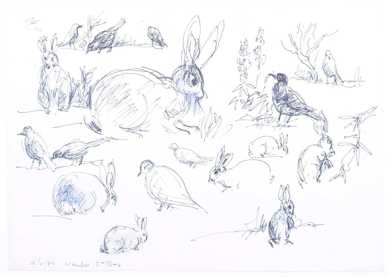 Rabbits original pen and ink sketch Derrick Sayer Beverley Nichols Cats ABC