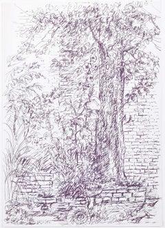 Tree original pen and ink sketch Derrick Sayer for Beverley Nichols Cats ABC