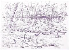 Ducks original pen and ink sketch Derrick Sayer for Beverley Nichols Cats ABC