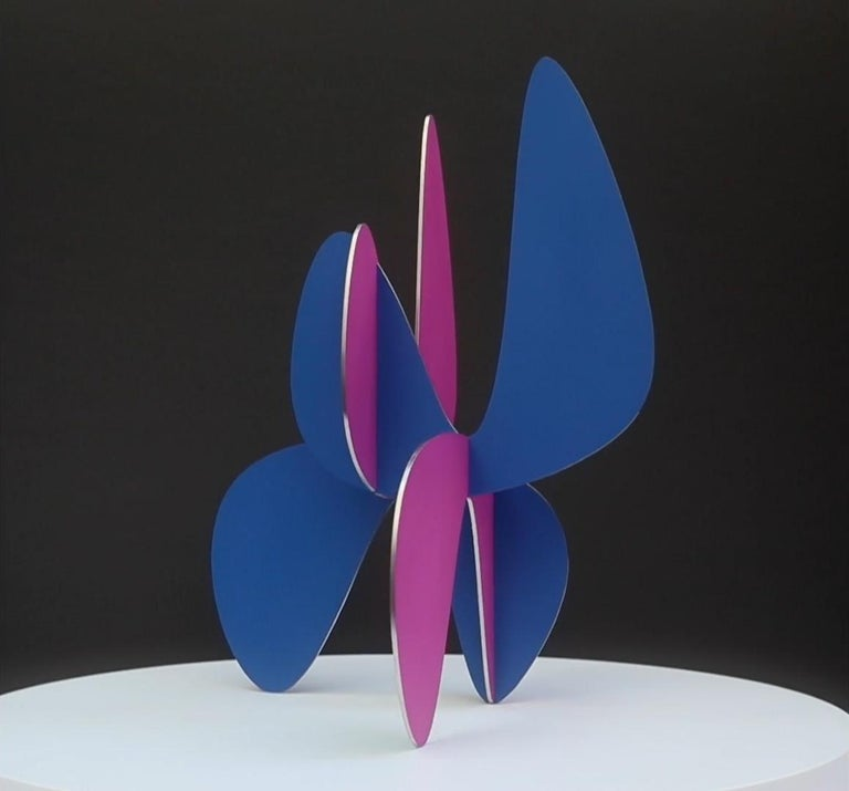 Barricada #9 aic 3S, Abstract Sculpture, Painted stainless steel For Sale 1