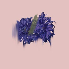 Imbue - Botanical fine art print by British Artist Simone Webb