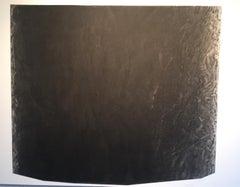 Bark Study A Charcoal Tree Drawing