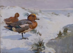 Wigeons In Winter A 20th Century Bird painting