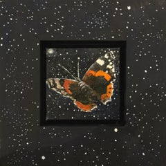 Red admiral by starlight