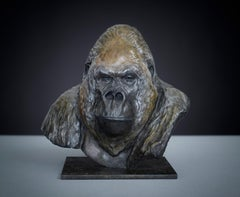 Contemporary Wildlife Bronze Sculpture of a Gorilla 'Nico Jnr' by Tobias Martin