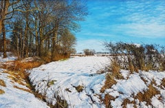 'The Lost Wood' A Realist Snowy Landscape by Contemporary artist Martin Taylor