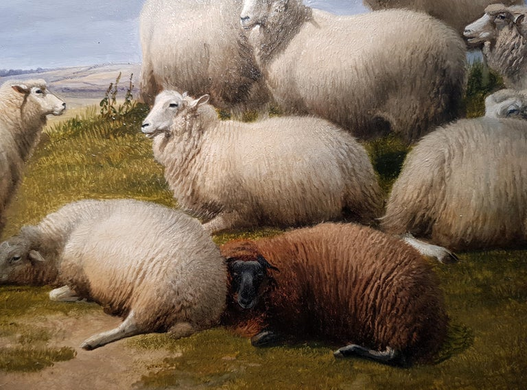 19th Century Landscape 'Resting Sheep' by Thomas Sidney Cooper CVO RA - Old Masters Painting by Thomas Sidney Cooper RA