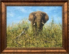 Original Oil Painting of Elephant in the Wild by British Contemporary Artist