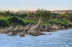 """October Marsh Grass"" original soft pastel on paper, en plein air lanscape"