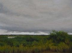 """""""Dark and Stormy Marsh"""" original soft pastel on paper, en plein air landscape"""