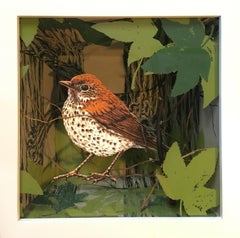 """Thrush in Bottomland Forest"" screenprint in shadow box, birds, mixed media"