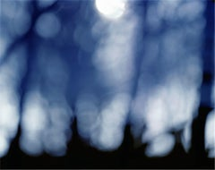 Aspects of Cosmological Indifference no.12 [Verse I] - by Nicholas Hughes