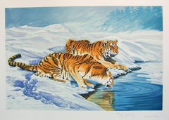 SIBERIAN TIGERS Hand Drawn Lithograph, Endangered Species, Tiger Portrait