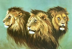 LION PORTRAIT Hand Drawn Lithograph, Male African Lions, Wildlife Art